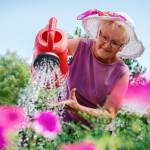 4 Gardening Tips for Seniors