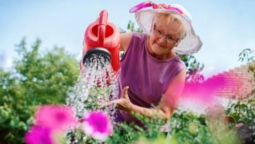 4 Gardening Tips for Seniors